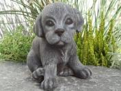 Garden ornamental Figure - Dog pup sitting, Cast stone, Slate grey