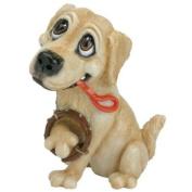 Little Paws - Barney The Golden Retriever