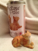 My Pedigree Pals - Ginger Tabby Cat