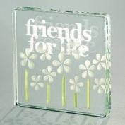 Friends for life glass token
