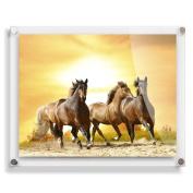 16x20 Modern Acrylic Photo Frame - . Wall Frame