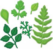 Spellbinders Shapeabilities Dies, Foliage