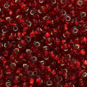 Czech Seed Beads 6/0 Ruby Red Silver Lined