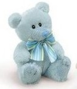 Little Blue Squeaky Teddy