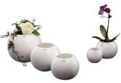 Ivyline 30-15W White Porcelain Sphere Vase/ Planter ø13cm