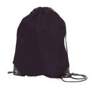 Shugon Stafford Nylon Drawstring Tote Backpack-O/S Black