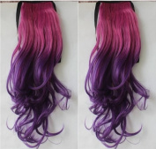 2013New Style 60cm Sexy Wave Ombre Clip Hair Ponytail Two Stone colour