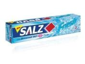 Salz Toothpaste Fresh 160G.