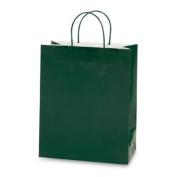 Green Gift Bag 6ct