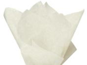 Birch Tissue Paper 50cm X 80cm - 48 Sheets Pack