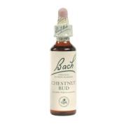 Chestnut Bud (20mL) Brand