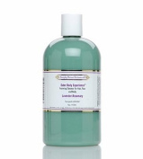 Outer Body Experience Lavender Rosemary Foaming Cleanser 470ml by Simply Divine Botanicals