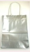 Glossy Silver Medium Size Gift Bag with Handles - 22cm X 11cm X 28cm