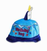 6PCs Koala Kids Birthday Boy Puffy Crown Hats