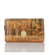 Nesti Dante Emozioni in Toscana - Enchanting Forest Soap 250g