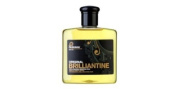 Pashana PB250 Pashana Original Brilliantine - 250ml - DENPB250