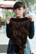 One Piece Long Curly Wave Synthetic Hair Extension Clip-on