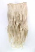 Hairpiece Halfwig (half wig) 7 Microclip Clip In Extension VERY long straight slight wave wavy BLOND H9505-22