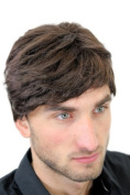 Men's WIG (for Men or Unisex) HIGH QUALITY synthetic short BROWN youthful young yet CLASSY look GFW1168-6 Man