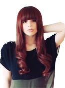 Cosplayland C367 - 65cm red-brown mixed straight and curly Ending gerade Bang Wig