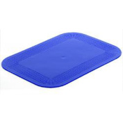 NRS Healthcare Dycem Blue Non-Slip Mat Rectangular Mat - 250 x 180mm
