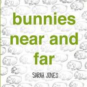 Bunnies Near and Far (Roygbaby) [Board book]