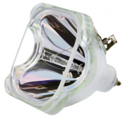 Philips OEM PHI/388 Replacement DLP Bare Bulb