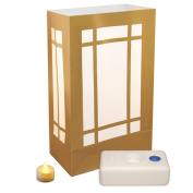 12 Count Battery Operated Luminary Kit with Gold Stars Design