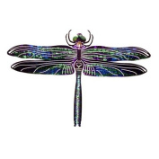 Refraxions Dragonfly 3D Wall Art