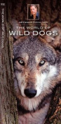 The World of Wild Dogs