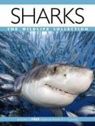 Sharks (Wildlife Collection)