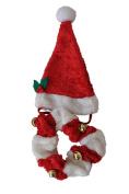 Christmas Pet Santa Hat & Collar Set