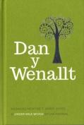 Dan y Wenallt - Cyfrol Canmlwyddiant [WEL]