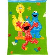 Sesame Street Toddler Blanket