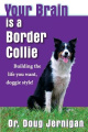 Your Brain Is a Border Collie