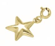9ct Yellow Gold Star Charm