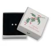 Christmas Gift Boxed Sterling Silver Flat star Stud Earrings - SIZE