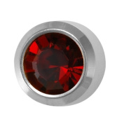 Studex Ear Piercing Silver Coloured Stainless Steel Birthstone Stud Earrings 4mm Bezel Setting - January / Garnet