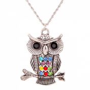 Tibetan Silver Colourful Owl Necklace