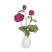 House of Silk Flowers Inc. Artificial Peony in Ceramic Vase