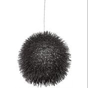Varaluz 169P01BL Pendants, Indoor Lighting, Black