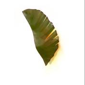 Varaluz 901K02 Wall Sconces, Indoor Lighting, Banana Leaf