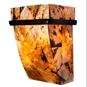 Varaluz 178K01B Wall Sconces, Indoor Lighting, Brilliant Mojave with Chocolate Tiger Shell Shade