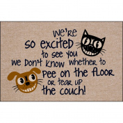 So Excited to See You Indoor/Outdoor Doormat