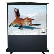 Inland 05360 150cm Portable Projection Floor Screen, Black
