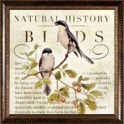 Pro Tour Memorabilia Birds Framed Artwork