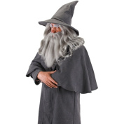 Gandalf Wig and Beard Adult Halloween Accessory