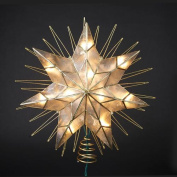36cm Lighted Capiz Sunburst 7-Point Star Christmas Tree Topper - Clear Lights
