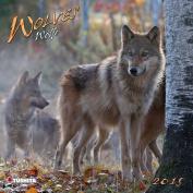 Wolves 2015 (Wonderful World)