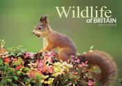 Wildlife of Britain 2015 Calendar